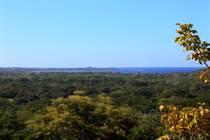 Homes for Sale in Playa Grande, Playa Grande, Las Ventanas Lote 1 , Guanacaste $179,000