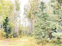 Lots and Land for Sale in River Ridge, Bonnyville No. 87, Alberta $99,900