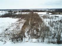 Lots and Land for Sale in Crowland/Schlisler, Niagara Falls, Ontario $199,000