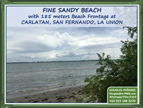 Commercial Real Estate for Sale in San Fernando , La Union ₱364,342,000