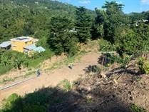 Lots and Land for Sale in Luna Llena, Trujillo Alto, Puerto Rico $49,500