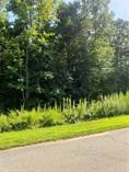 Lots and Land for Sale in Liberty, North Carolina $39,950