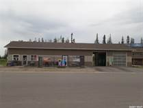 Commercial Real Estate for Sale in Candle Lake, Saskatchewan $352,500