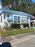 Homes for Sale in Shady Lane Village Mobile Home Park, Clearwater, Florida $25,000