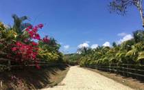 Lots and Land for Sale in Santa Teresa, Puntarenas $99,000