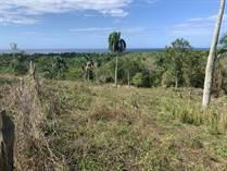 Lots and Land for Sale in Rio San Juan, Maria Trinidad Sanchez $89,900
