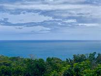 Lots and Land for Sale in Dominical, Puntarenas $599,000