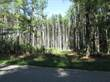 Lots and Land for Sale in Wisconsin Dells, Wisconsin $13,500