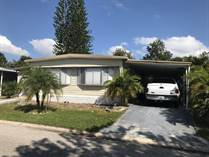 Homes for Sale in Carefree Village, Tampa, Florida $57,500