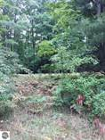 Lots and Land for Sale in Michigan, Empire, Michigan $79,000