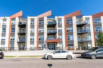 10523 123 St NW, Suite 313, Edmonton, Alberta
