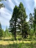 Lots and Land for Sale in Libby, Montana $57,500