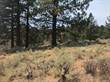 Lots and Land for Sale in Bear Valley Springs , Tehachapi, California $29,500