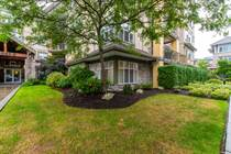 Condos for Sale in S Watson-Promontory, Chilliwack, British Columbia $499,900
