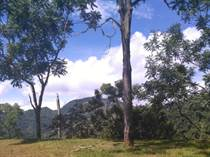 Lots and Land for Sale in Puriscal, San José $45,000