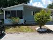 Homes for Sale in Riverview, Florida $52,900