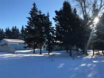 Homes Sold in Mirror, Alberta $99,000