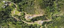 Farms and Acreages for Sale in BO. PIEDRAS BLANCAS, Aguada, Puerto Rico $585,000