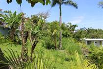 Lots and Land for Sale in Puntas, Rincon, Puerto Rico $99,000