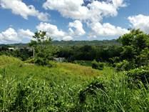 Lots and Land for Sale in BO. VOLADORA MOCA, Moca, Puerto Rico $170,000