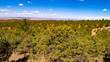 Lots and Land for Sale in Valdez, New Mexico $110,000
