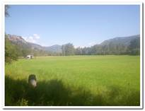 Farms and Acreages for Sale in Rock Creek, British Columbia $1,600,000