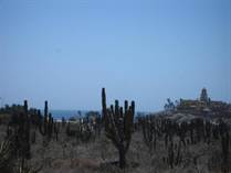 Lots and Land for Sale in Cerritos Beach, Baja California Sur $80,000
