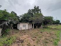 Lots and Land for Sale in David, Chiriquí  $57,600