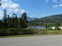 Lots and Land for Sale in Valemount, British Columbia $68,000