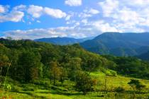 Lots and Land for Sale in Londres, Quepos, Puntarenas $62,025