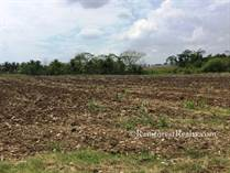 Lots and Land for Sale in Santa Familia, Cayo $25,000