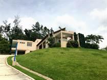 Homes for Sale in PUEBLO, Aibonito, Puerto Rico $360,000