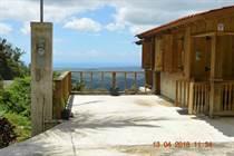 Homes for Sale in Bo. Rucio, Penuelas, Puerto Rico $79,000