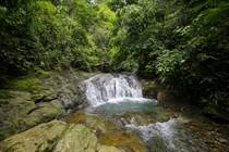Farms and Acreages for Sale in Lagunas , Dominical, Puntarenas $750,000