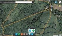 Lots and Land for Sale in BO QUEBRADA GRANDE, Barranquitas, Puerto Rico $200,000