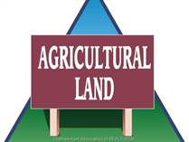Farms and Acreages for Sale in Ontario, Chatham-Kent, Ontario $1,290,000