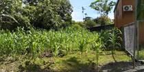 Homes for Sale in Bahia Ballena, Puntarenas $24,000