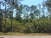 Lots and Land for Sale in East, Lehigh Acres, Florida $6,500