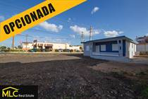 Homes for Sale in Membrillo, Camuy, Puerto Rico $159,000