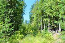 Lots and Land for Sale in Winlaw, British Columbia $320,000