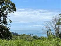 Lots and Land for Sale in Escaleras , Dominical, Puntarenas $275,000