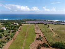 Homes for Sale in Bejucos, Isabela, Puerto Rico $3,500,000