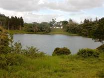 Lots and Land for Sale in Bo. Bayamon, Cidra, Puerto Rico $599,000