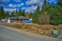 Lots and Land for Sale in Clearwater, British Columbia $79,900