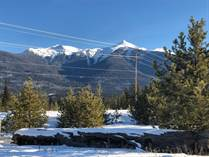 Commercial Real Estate Sold in Cedarside, Valemount, British Columbia $525,000