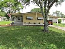 Homes for Sale in Brookridge, Brooksville, Florida $118,300