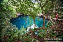 Lots and Land for Sale in Ruta de los Cenotes, Puerto Morelos, Quintana Roo $109,900
