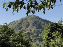 Homes for Sale in Santa Rosa, Guanacaste $29,000