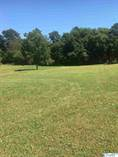 Homes for Sale in Metes & Bounds, Arab, Alabama $20,000