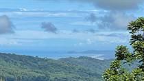 Lots and Land for Sale in Tinamastes, Puntarenas $65,000